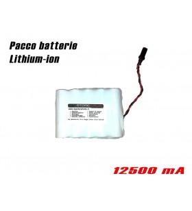 Batteria 12500 mAh (lunga autonomia) per localizzatori